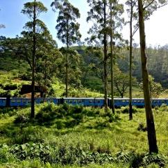 Train Kandy-Hatton