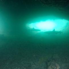 Los tuneles, Isabela