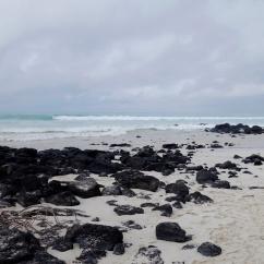Las Tortugas, Santa Cruz
