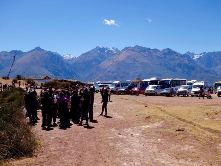Groupes et minibus présents partout