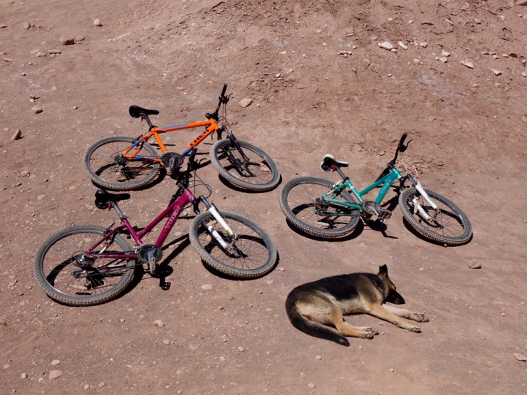 Les vélos étaient fatigués, alors...