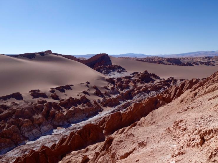 Dune vs. Roche