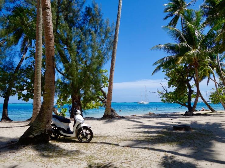 pb_bilan_polynesie-2