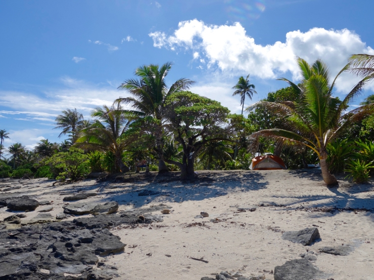 pb_bilan_polynesie-6