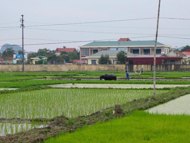 pb_halong-bay-1